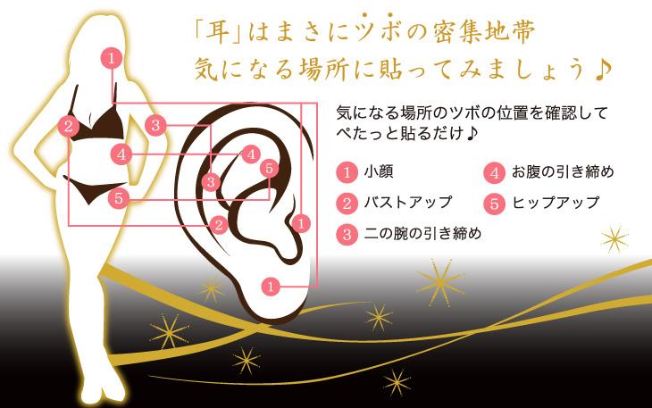 耳はまさにツボの密集地帯気になる場所に貼ってみましょう。気になる場所のツボの位置を確認してぺたっと貼るだけ